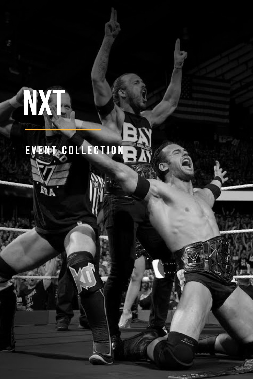 5d43a2c00e4ed_WWENXTCollection.jpg