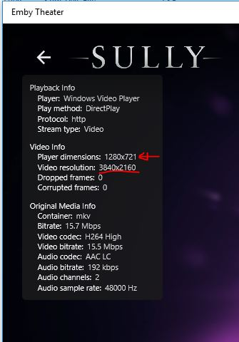 Problem with Multi-version/resolution movies - General/Windows