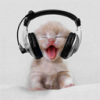 Emby Bands - Stay up-to-date with your favorite artists - last post by hamstercat